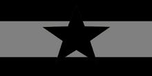 NewSepFlag