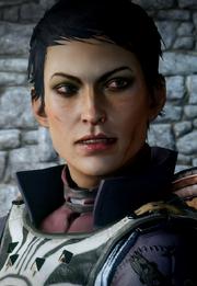 Cassandra-new