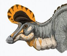 Lambeosaurus magnicristatus DB