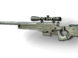 Arctic Warfare Sniper Rifle