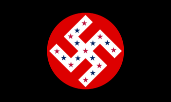Political party the american nazi party by drivanmoffitt-d4x0uhn