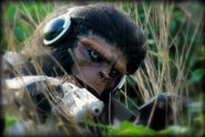 Monkey trooper hunting by dtdstudio-d6e326h