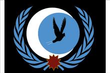 UFSFlag