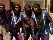 Planet-of-the-Apes-Gorilla-Soldier-Cosplay-Costume-Version-01-3