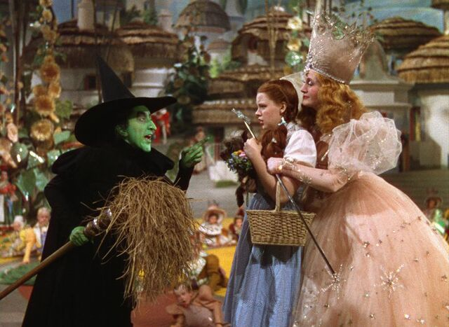 File:Dorothy meets the Wicked Witch.jpg