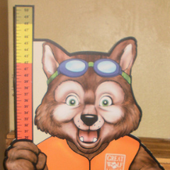 Earlier Art of Wiley's redesign in 2010 featuring him with his lifejacket and swim trunks.