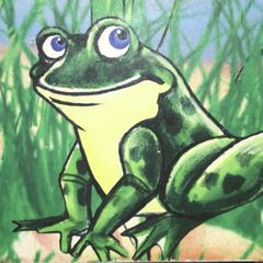 A frog can be seen in the Cub Club standing on a rock.