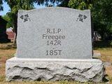 Freegee