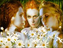 Greek Gods and Goddesses (3)