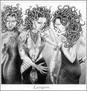 Snake Sisters