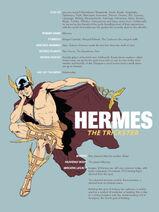 Hermes-Pin-up-767x1024