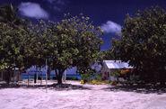 Funafuti (Tuvalu)