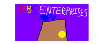 PBS Enterprises