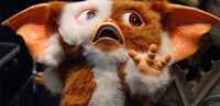 Gremlins-gizmo-scared-sequelnews