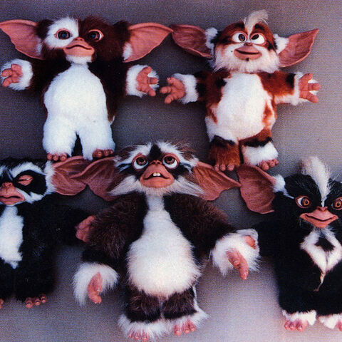 The mogwai puppets used in <i>Gremlins 2: the New Batch</i>.