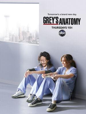 Poster-Greys-Anatomy-Saison-8