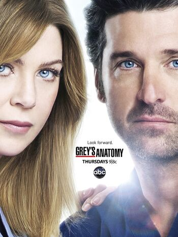 Season-9-hd-poster-greys-anatomy-37540238-2353-3140