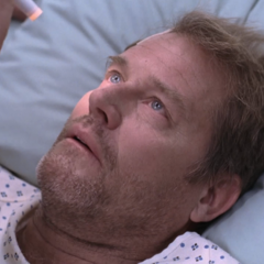 Brian Kerwin como Holden McKee