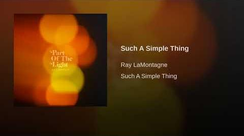 """Such A Simple Thing"" - Ray LaMontagne"