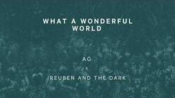 """""""What a Wonderful World"""" - Reuben and the Dark & AG"""