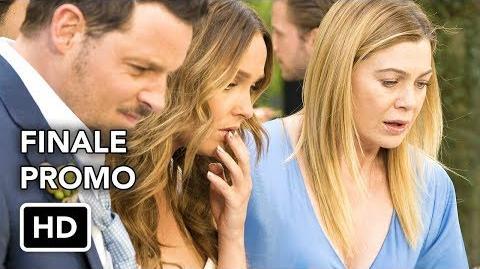 "Grey's Anatomy 14x24 Promo ""All of Me"" (HD) Season 14 Episode 24 Promo Season Finale"