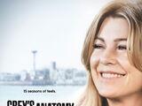 Season 15 (Grey's Anatomy)