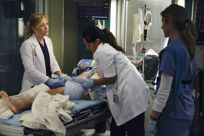 Seal Our Fate Greys Anatomy Universe Wiki Fandom Powered By Wikia
