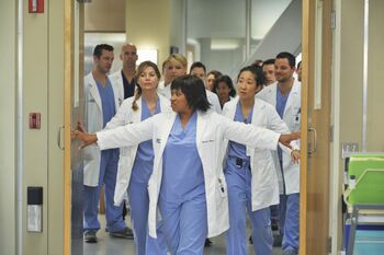There's No 'I' in Team | Grey's Anatomy Universe Wiki | FANDOM