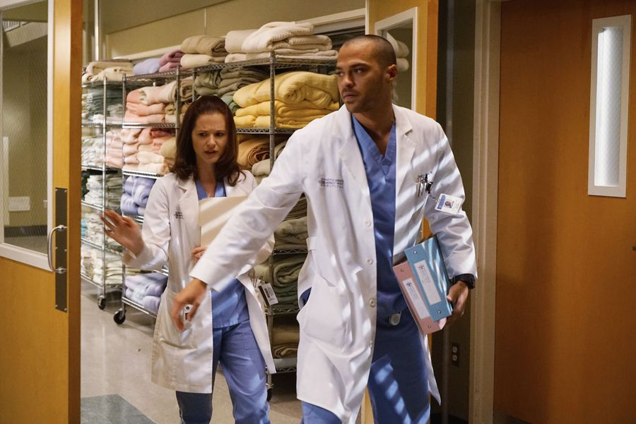 Watch Greys Anatomy Series 10 Choice Image - human body anatomy