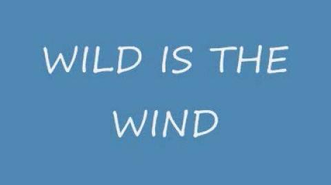 """Wild is the Wind"" - The Second Band"