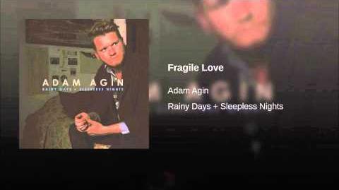 """""""Fragile Love"""" - Adam Agin"""