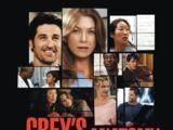 The Grey's Anatomy Soundtrack