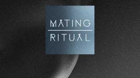 """Song Beneath the Song"" - Mating Ritual"