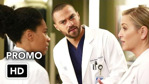"Grey's Anatomy 13x12 Promo ""None of Your Business"" (HD) Season 13 Episode 12 Promo"