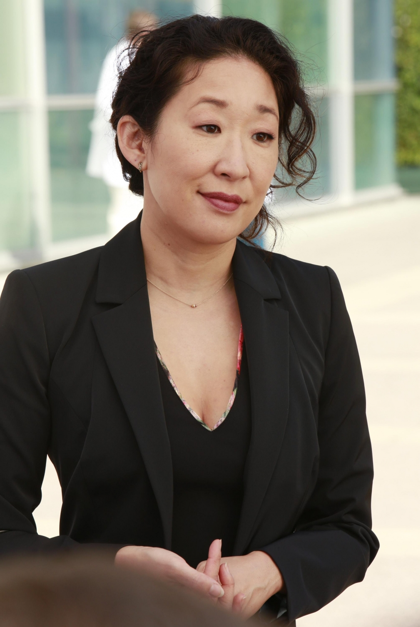 Cristina Yang Greys Anatomy Universe Wiki Fandom Powered By Wikia