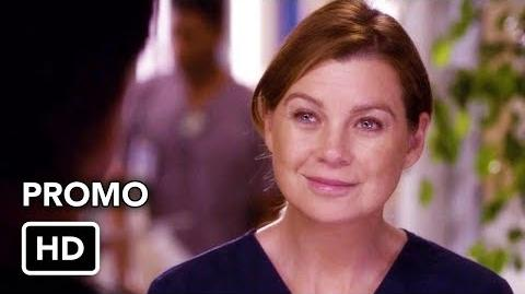 "Grey's Anatomy Season 14 ""Love Triangle"" Promo (HD)"