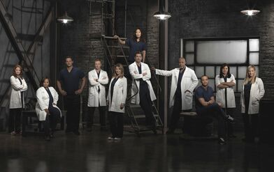 Grey's anatomy cast photo season 9