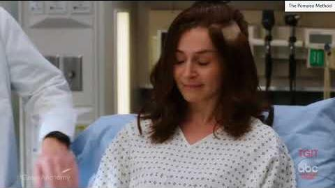 "Grey's Anatomy 14x04 ""Ain't That a Kick in the Head"" PROMO"