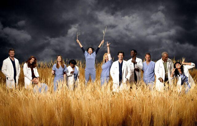Image - Season 3 cast 2.jpeg   Grey\'s Anatomy Universe Wiki   FANDOM ...