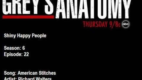 """American Stitches"" - Richard Walters"