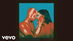 """""""Goodbye"""" - Cage the Elephant"""