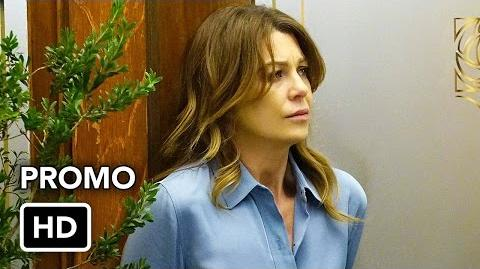 "Grey's Anatomy 13x19 Promo ""What's Inside"" (HD) Season 13 Episode 19 Promo"
