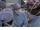 Dr. Knox (OB/GYN)