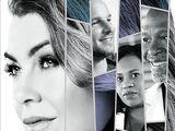 Season 14 (Grey's Anatomy)