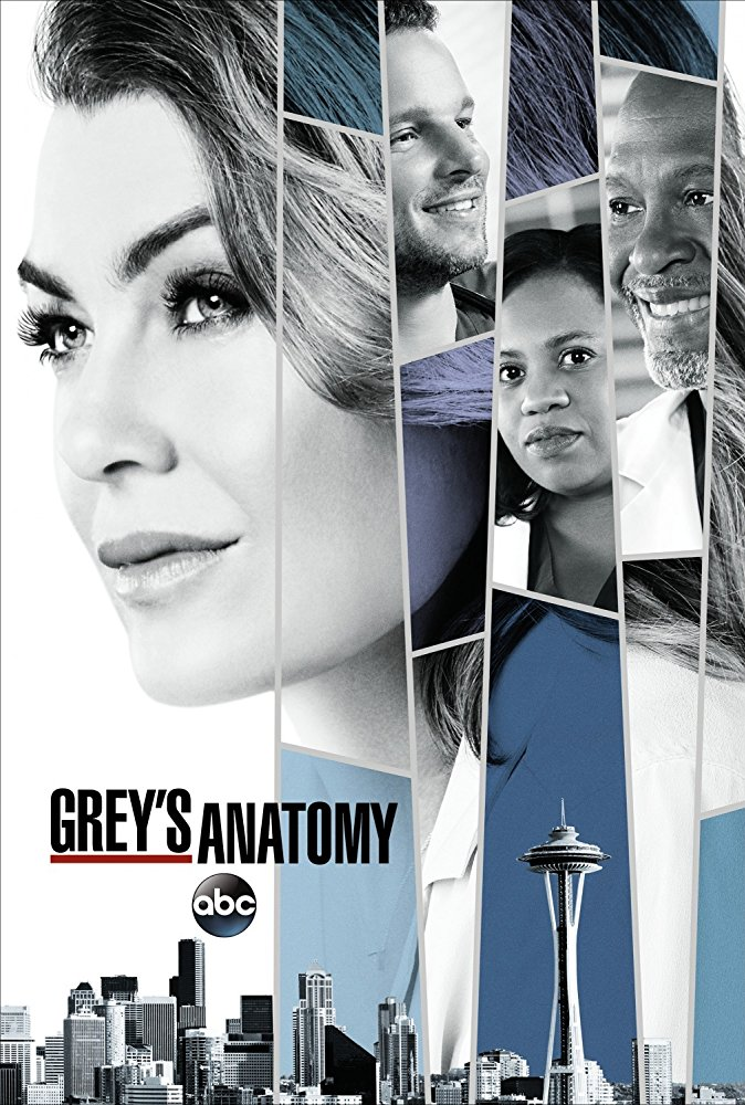 Season 14 (Grey\'s Anatomy) | Grey\'s Anatomy Universe Wiki | FANDOM ...
