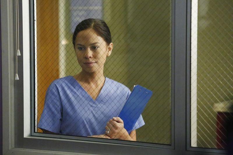 Wendy Greys Anatomy Universe Wiki Fandom Powered By Wikia