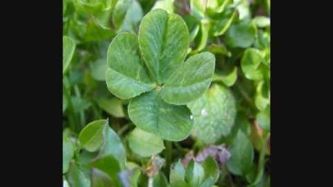 """4 Leaf Clover"" - MoZella"