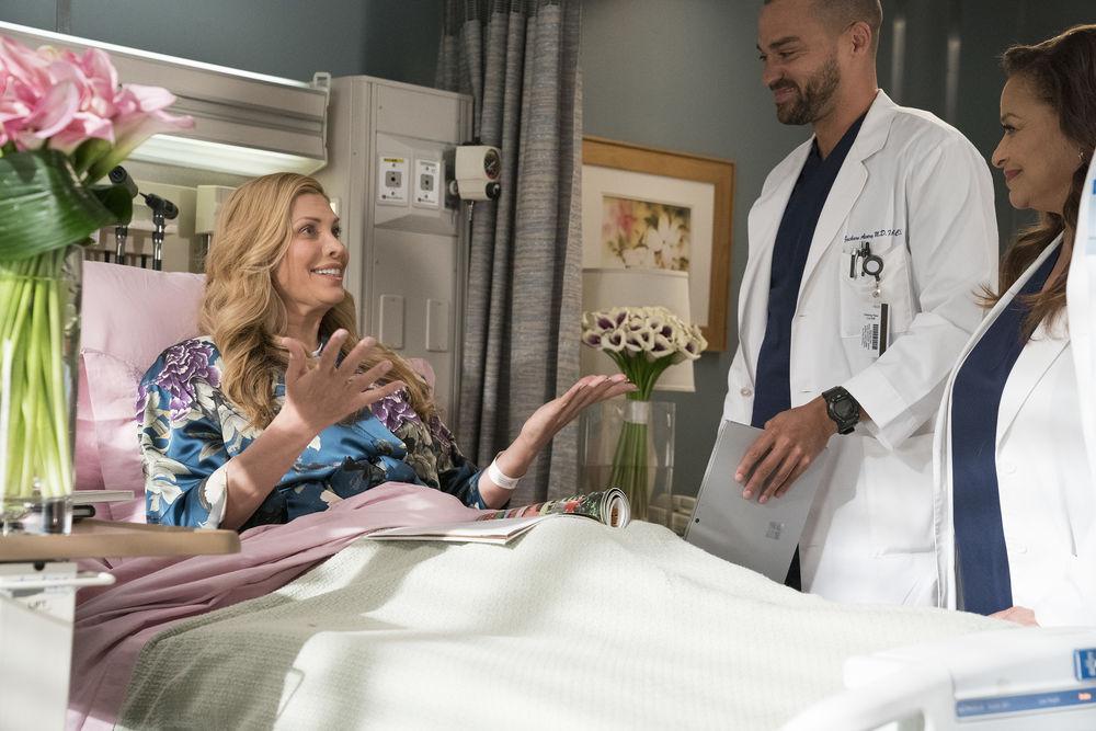 Greys Anatomy 14X16 Zeitschleife — WPDevil