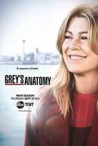 220px-Grey's Anatomy season 15 poster