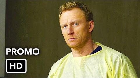 "Grey's Anatomy 13x15 ""Civil War"" Promo"